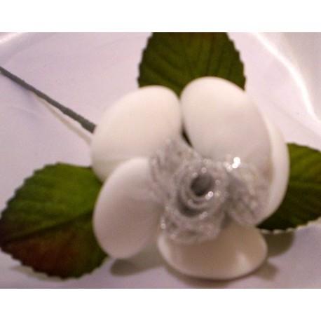 rosa nozze argento